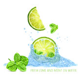 Fresh mint and limes in water splash Stock Photography