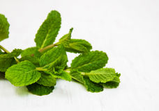 Fresh mint. On a old white wooden background Royalty Free Stock Photo