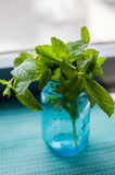 Fresh Mint ready for a mojito. Fresh cut herbs from the garden in a blue mason jar Stock Images