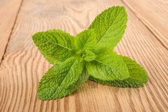 Fresh mint sprig. On wood background Royalty Free Stock Photography