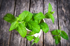 Fresh mint. Sprigs of fresh green mint on a wooden surface Royalty Free Stock Image