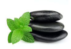 Fresh mint on the stones Stock Image