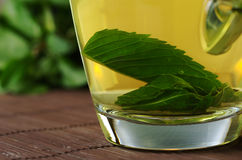 Fresh Mint Tea Royalty Free Stock Image