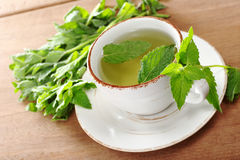 Fresh Mint Tea Stock Image