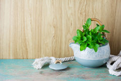Fresh mint in tea pot Royalty Free Stock Photo