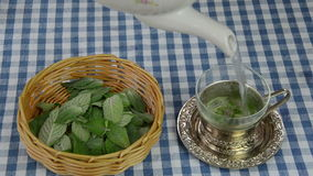 Fresh mint tea prepare Stock Image