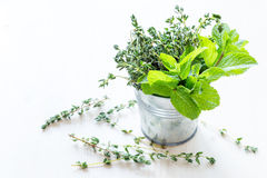Fresh mint. And thyme in a small bucket stock image