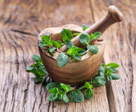 Fresh mint, wooden mortar and pestle. Royalty Free Stock Image