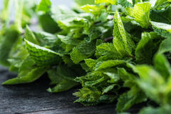 Fresh mint on wooden table Stock Images