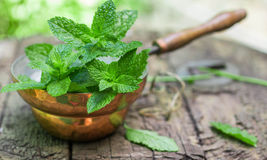 Fresh mint on a wooden table.  Selective focus Royalty Free Stock Photography