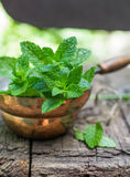 Fresh mint on a wooden table.  Selective focus Royalty Free Stock Photos