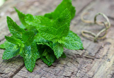 Fresh mint on a wooden table.  Selective focus Stock Images