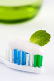 Fresh Minty Toothbrush. Closeup of the head of a toothbrush with fresh white toothpaste and a green mint leaf, conceptual of oral freshness Royalty Free Stock Photos