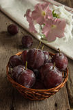 The fresh misted-over plums Royalty Free Stock Image