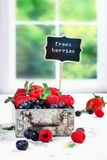 Fresh mix of berries in a metal box on white stone background Stock Photo