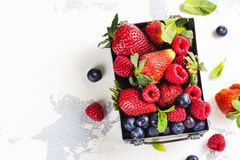 Fresh mix of berries in a metal box on white stone background Stock Image