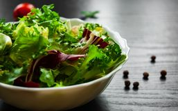 Fresh mix salad leaves with lettuce, radicchio, and rocket in bowl on dark wooden background. Various fresh mix salad leaves with lettuce, radicchio, and rocket Stock Image