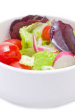 Fresh mix of spring salad Stock Images