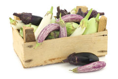 Fresh mixed aubergines(Cucurbita pepo) in a wooden crate Royalty Free Stock Images