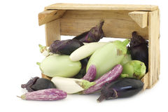 Fresh mixed aubergines(Cucurbita pepo) in a wooden crate Royalty Free Stock Photos
