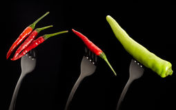 Fresh mixed chilli on stainless fork Stock Photos