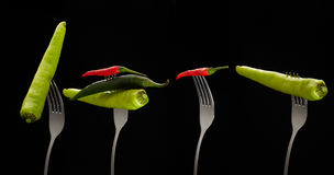 Fresh mixed chilli on stainless fork Stock Images