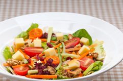 Fresh colorful healthy salad Stock Images