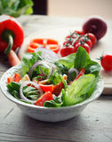 Salad. Fresh mixed  delicious  vegetable salad Royalty Free Stock Photography