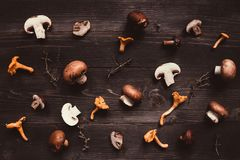 Fresh mixed forest mushrooms on the wooden background Royalty Free Stock Photography