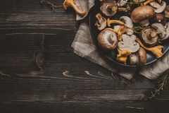 Fresh mixed forest mushrooms on the wooden black table stock images