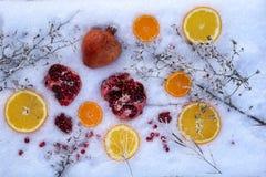 Fresh mixed fruit on snow. Fresh mixed fruit with orange, pomegranate, mandarin on snow Stock Image