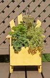 Fresh Mixed Herbs in a Wood Planter Stock Photography