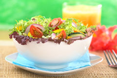 Fresh Mixed Salad Stock Image