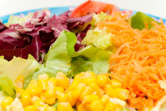 Fresh mixed salad Royalty Free Stock Photography