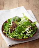 Fresh mixed salad Stock Photo