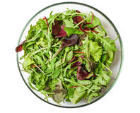 Fresh mixed salad greens in serving bowl isolated on white Royalty Free Stock Photos