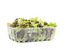 Fresh mixed salad leaves. Stock Image