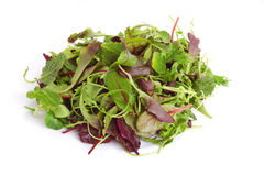 Mixed salad. Fresh mixed salad leaves over white background Stock Image