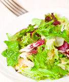 Fresh mixed salad leaves Royalty Free Stock Images