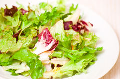 Fresh mixed salad leaves Stock Photos