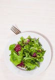 Fresh mixed salad leaves Stock Photography