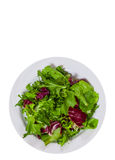Fresh mixed salad leaves. top view. isolated Royalty Free Stock Photo
