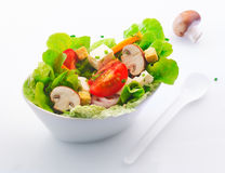 Fresh mixed salad with mushrooms Stock Photography