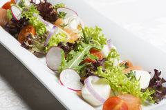 Fresh mixed salad with salmon Royalty Free Stock Image