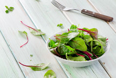Fresh mixed salad royalty free stock photos