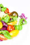 Fresh mixed salad with tomatoes Royalty Free Stock Photo