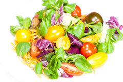 Fresh mixed salad with tomatoes Royalty Free Stock Photography