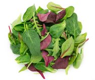 Fresh mixed salad on white background royalty free stock images