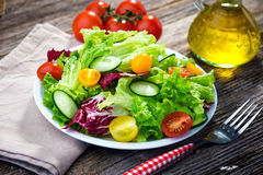 Fresh mixed salad Stock Images