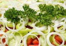 Fresh mixed vefetables salad Royalty Free Stock Image